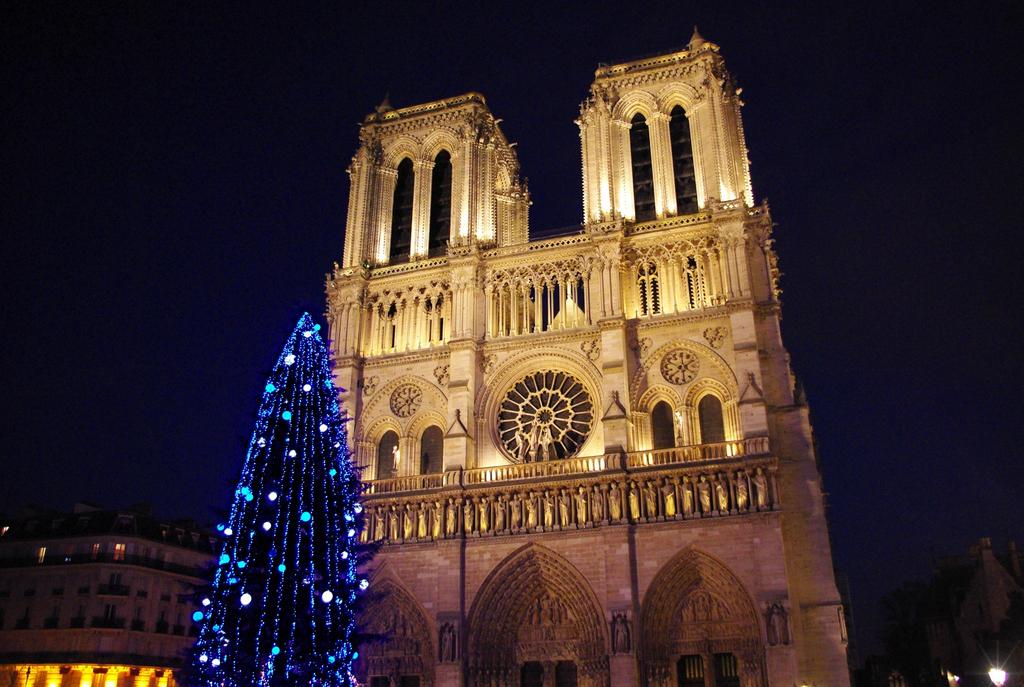 Parvis de Notre-Dame et sapin de Noël © French Moments