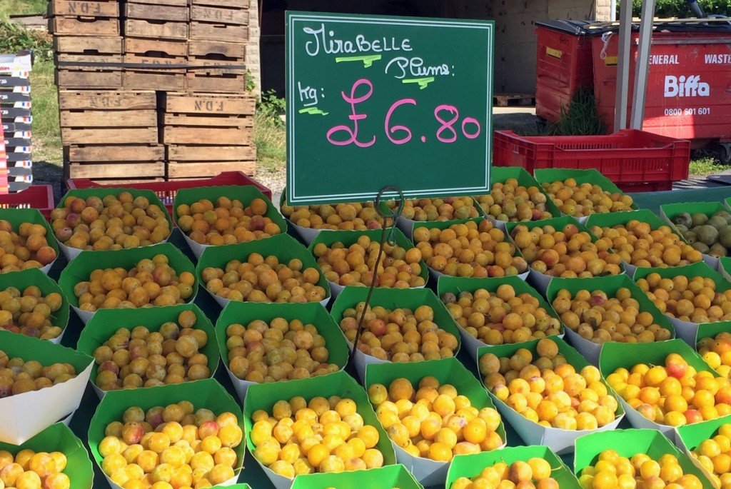 Mirabelles à Heathfield © French Moments