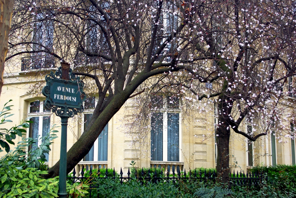 Le printemps au Parc Monceau (Paris) début février 2016 © French Moments